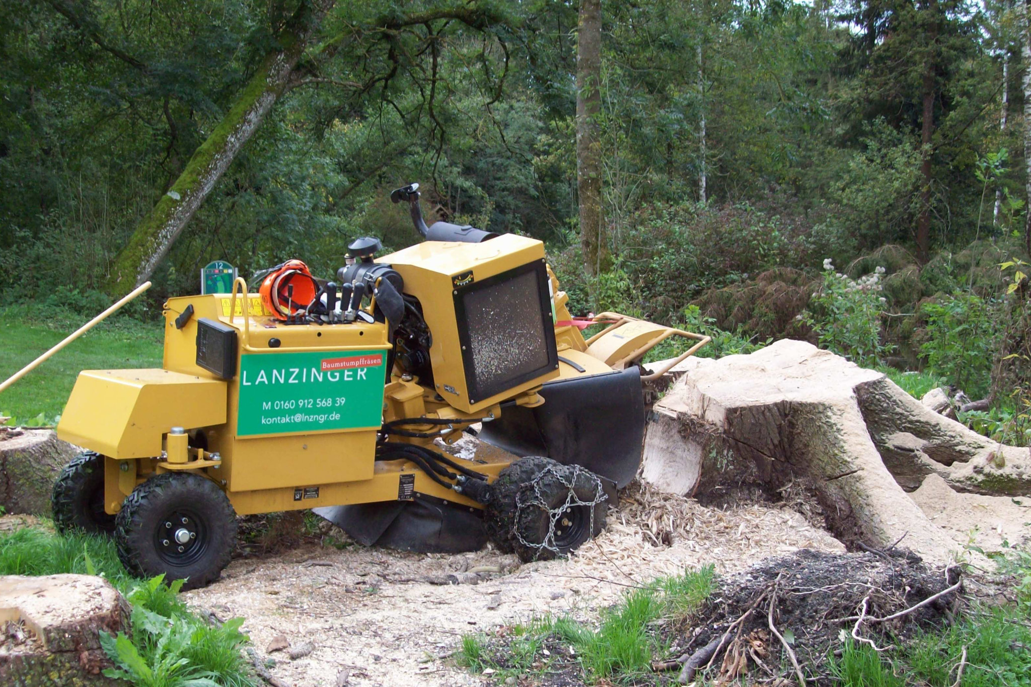 Baumstumpffräse von Lanzinger in Aktion an großem Wurzelstock